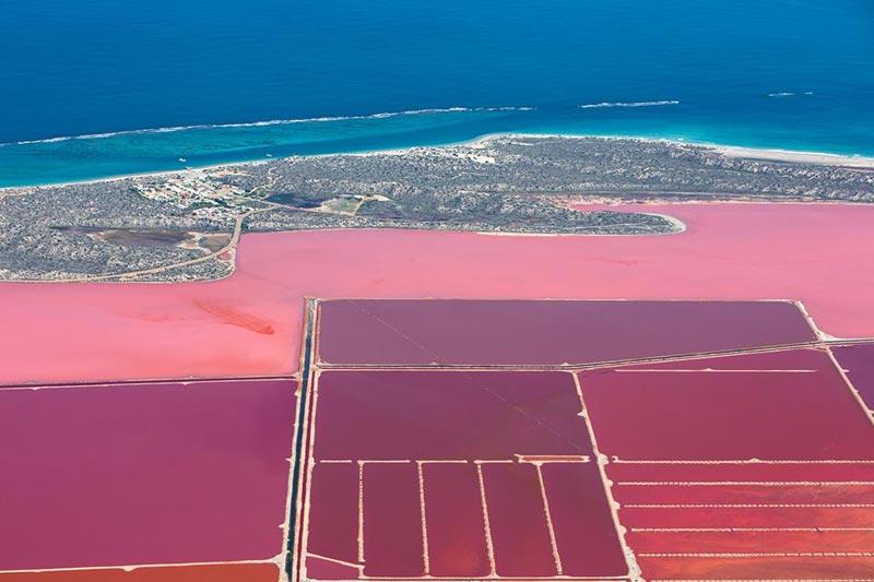 lago-rosa-hutt-lagoon-aus