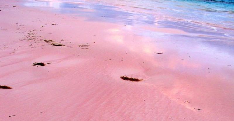 spiaggia rosa 3