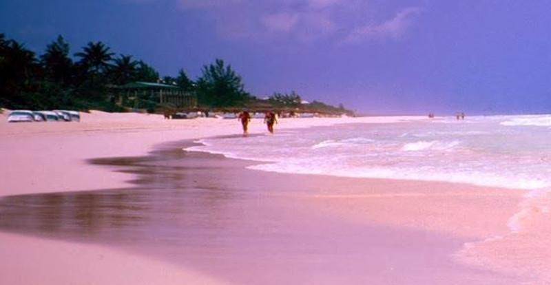 spiaggia rosa 4