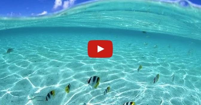 incredibile-mare-trasparente-mar-rosso