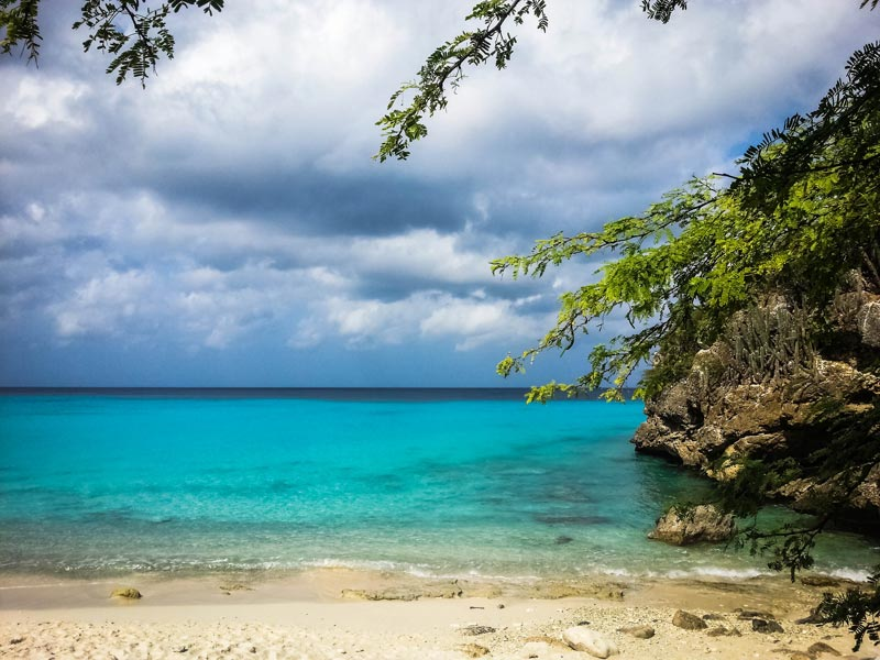 Groot-Knip-Curacao