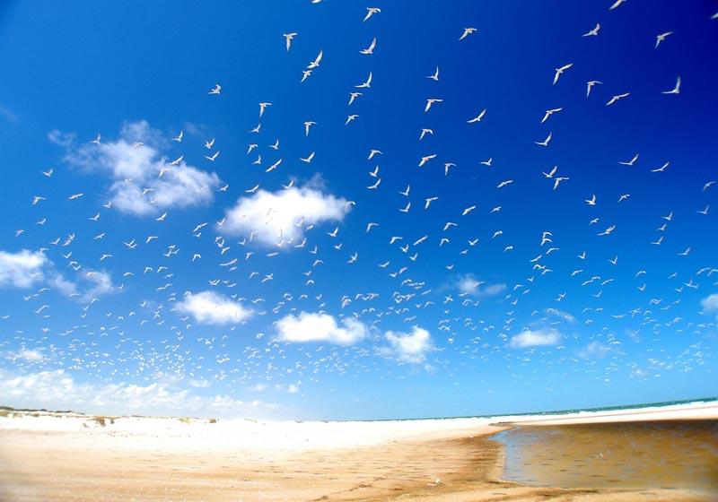 Praia-do-Cassino