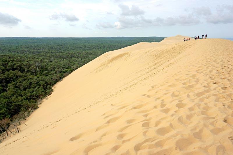 dune-du-pilat-(7)