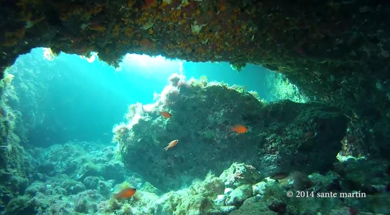 immersioni-san-vito-lo-capo (4)