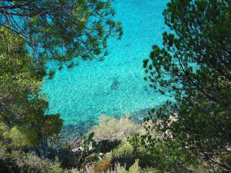 Spiaggia-di-Fetovaia