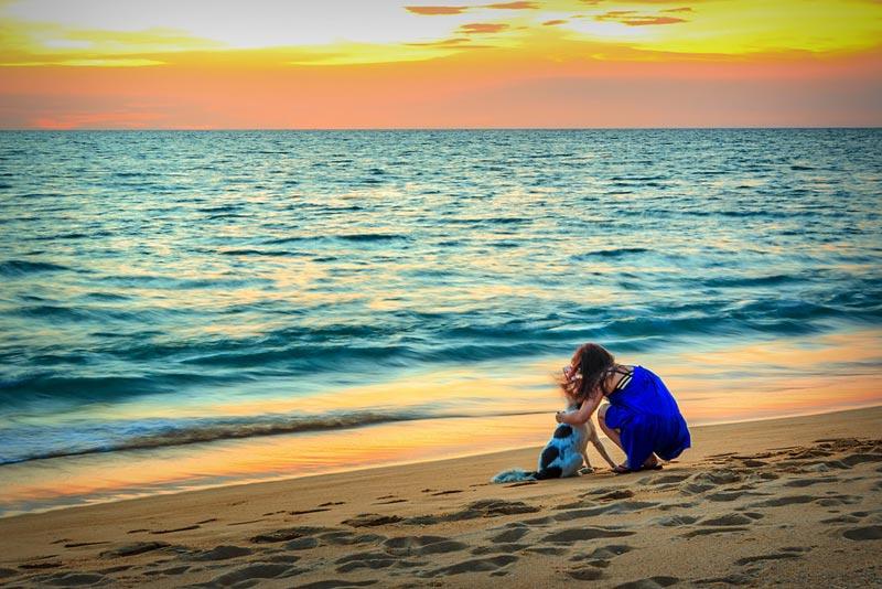 spiagge-per-cani-(1)