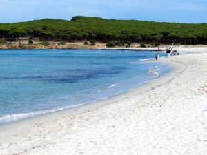 Lencois maranhenses una infinita distesa di sabbia bianca for Sardegna budoni spiagge
