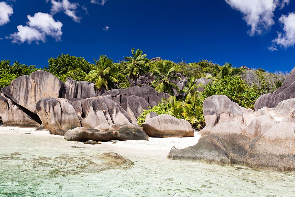mare-trasparente-seychelles