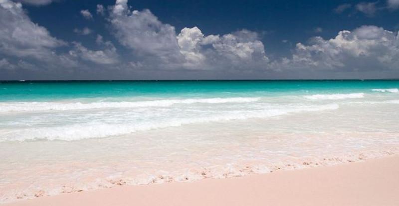 spiaggia rosa 5