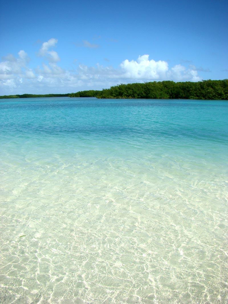 Bonaire-(2)