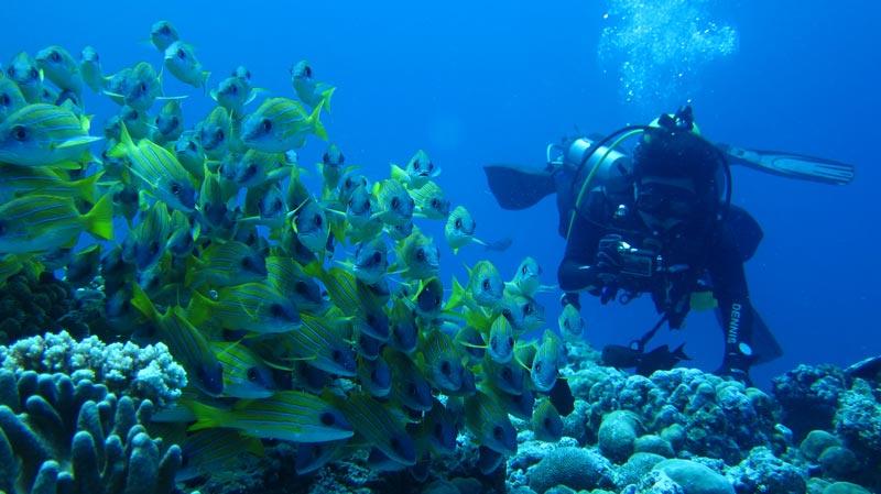 Palau-Micronesia-(1)
