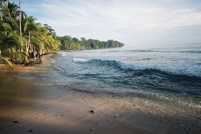Punalu'u-Beach-(2)