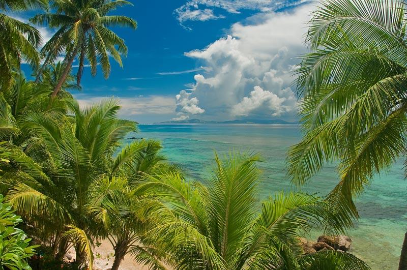 Taveuni-fiji-(3)