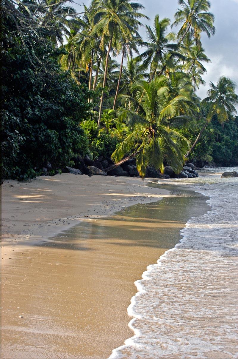 Taveuni-fiji-(4)