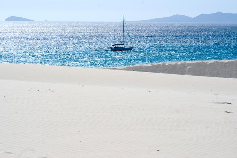 porto-pino-(3)