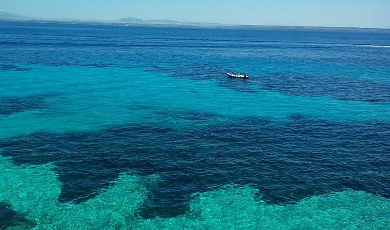 bue-marino-favignana-(1)