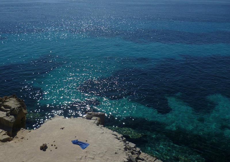 bue-marino-favignana-(3)