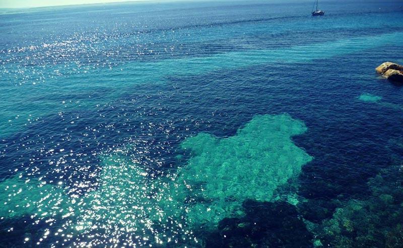 bue-marino-favignana-(4)