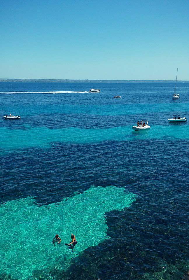bue-marino-favignana-(5)