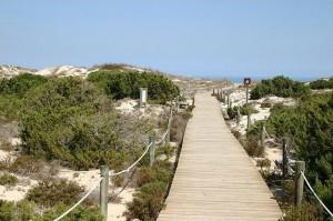 Playa Llevant (2)