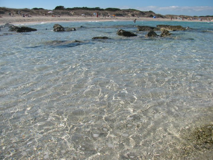Playa-Llevant (6)