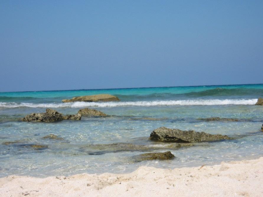playa-llevant