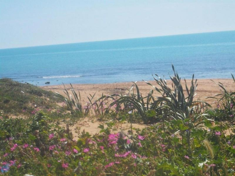 spiagge-agrigento-(29)
