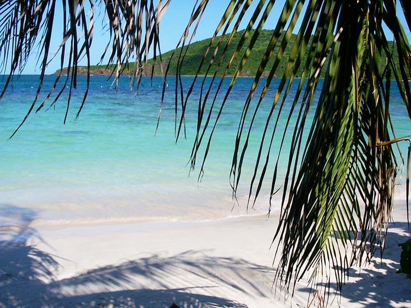 flamenco-beach-(1)